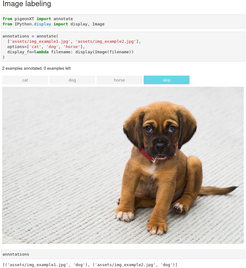 Jupyter notebook multi-label classification
