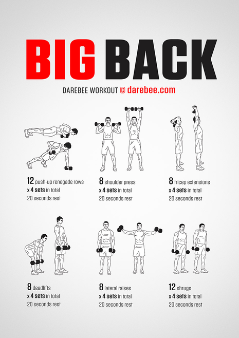 big-back-workout.png