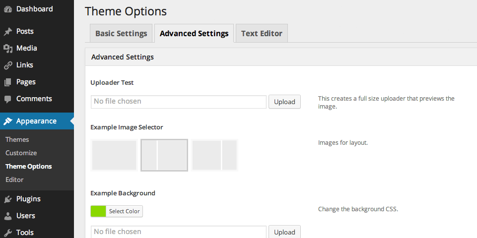 "An example of the ""Advanced Options"" tag in the ""Options Check"" theme using this plugin."