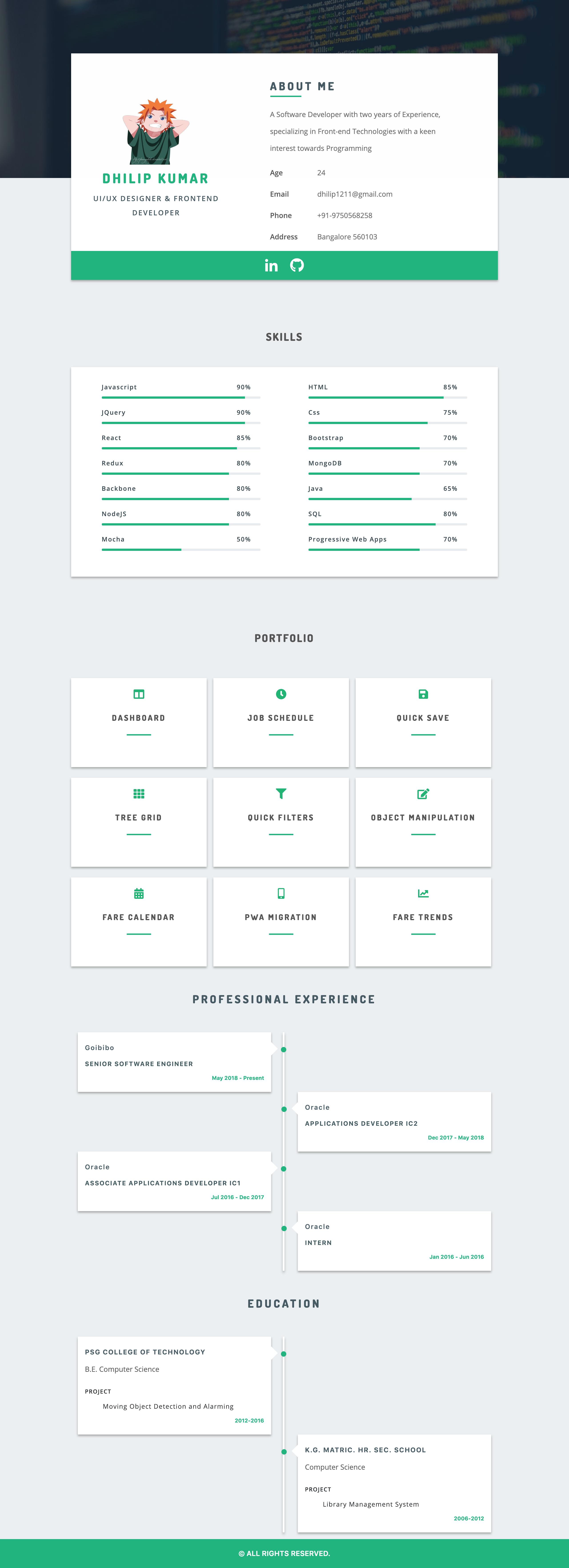 alt Resume sample