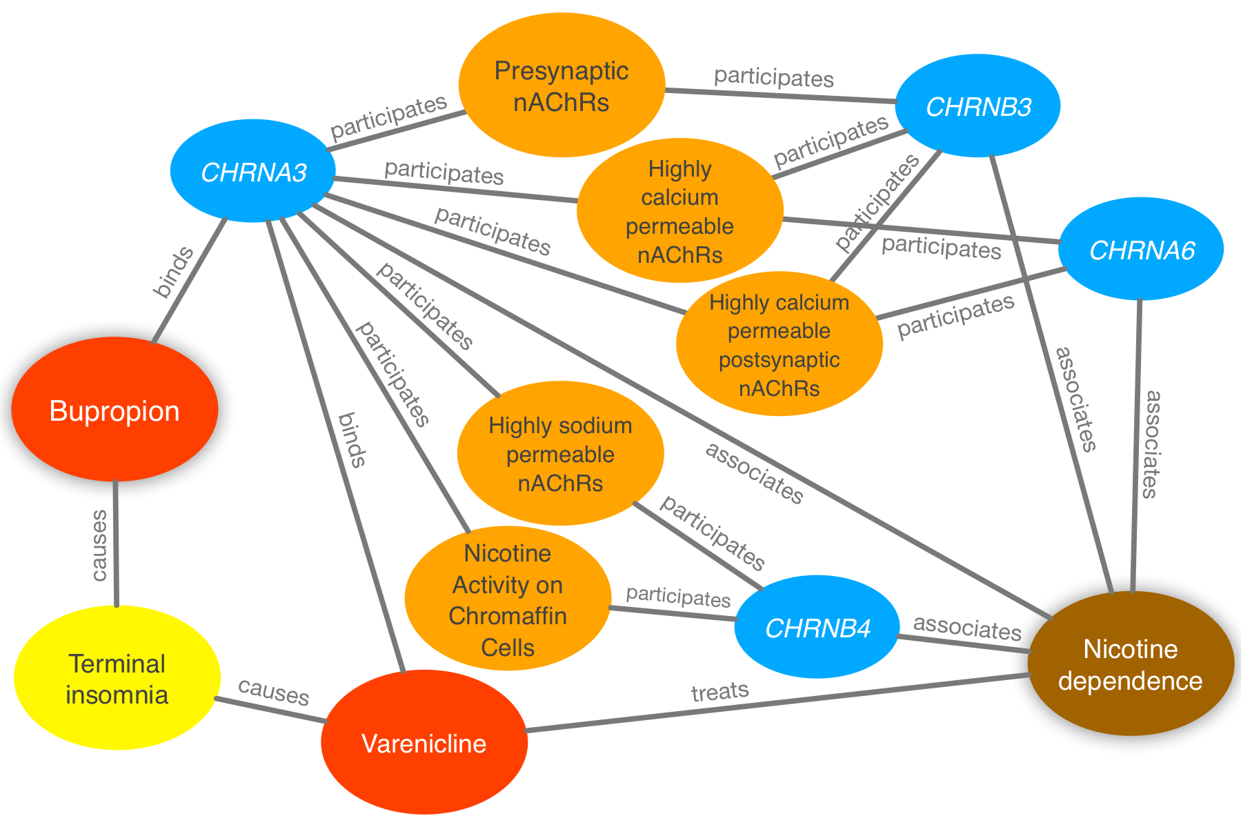 Figure 4: Evidence supporting the repurposing of bupropion for smoking cessation. This figure shows the 10 most supportive paths (out of 365 total) for treating nicotine dependence with bupropion, as available in this prediction's Neo4j Browser guide. Our method detected that bupropion targets the CHRNA3 gene, which is also targeted by the known-treatment varenicline [44]. Furthermore, CHRNA3 is associated with nicotine dependence [45] and participates in several pathways that contain other nicotinic-acetylcholine-receptor (nAChR) genes associated with nicotine dependence. Finally, bupropion causes terminal insomnia [46] as does varenicline [47], which could indicate an underlying common mechanism of action.