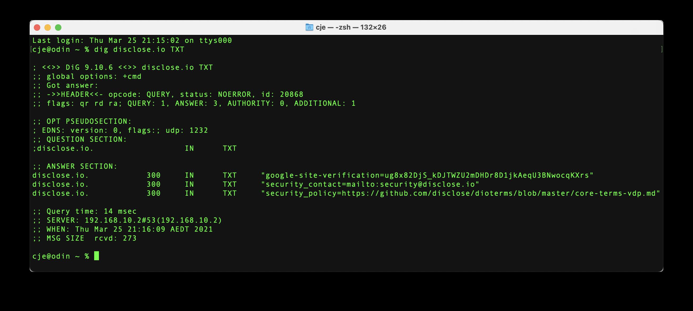 DNS Text Screencap for disclose.io