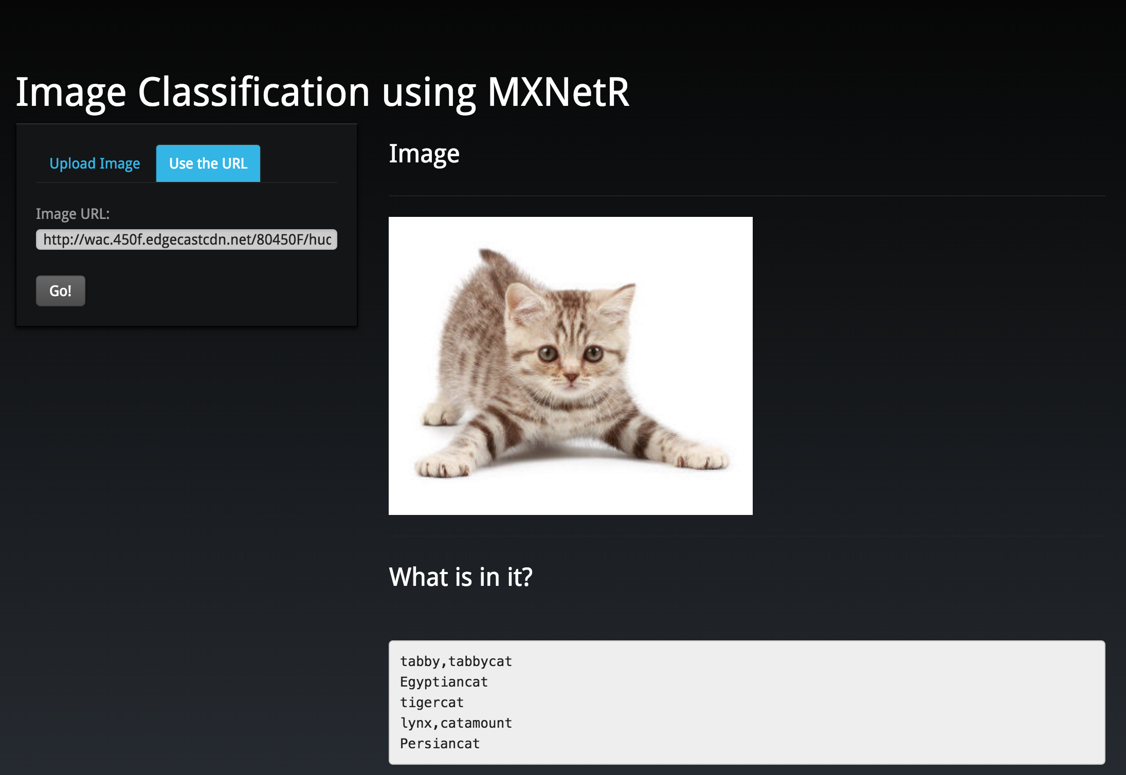 Build Online Image Classification Service with Shiny and MXNetR