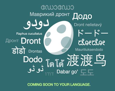 Translate Dododex