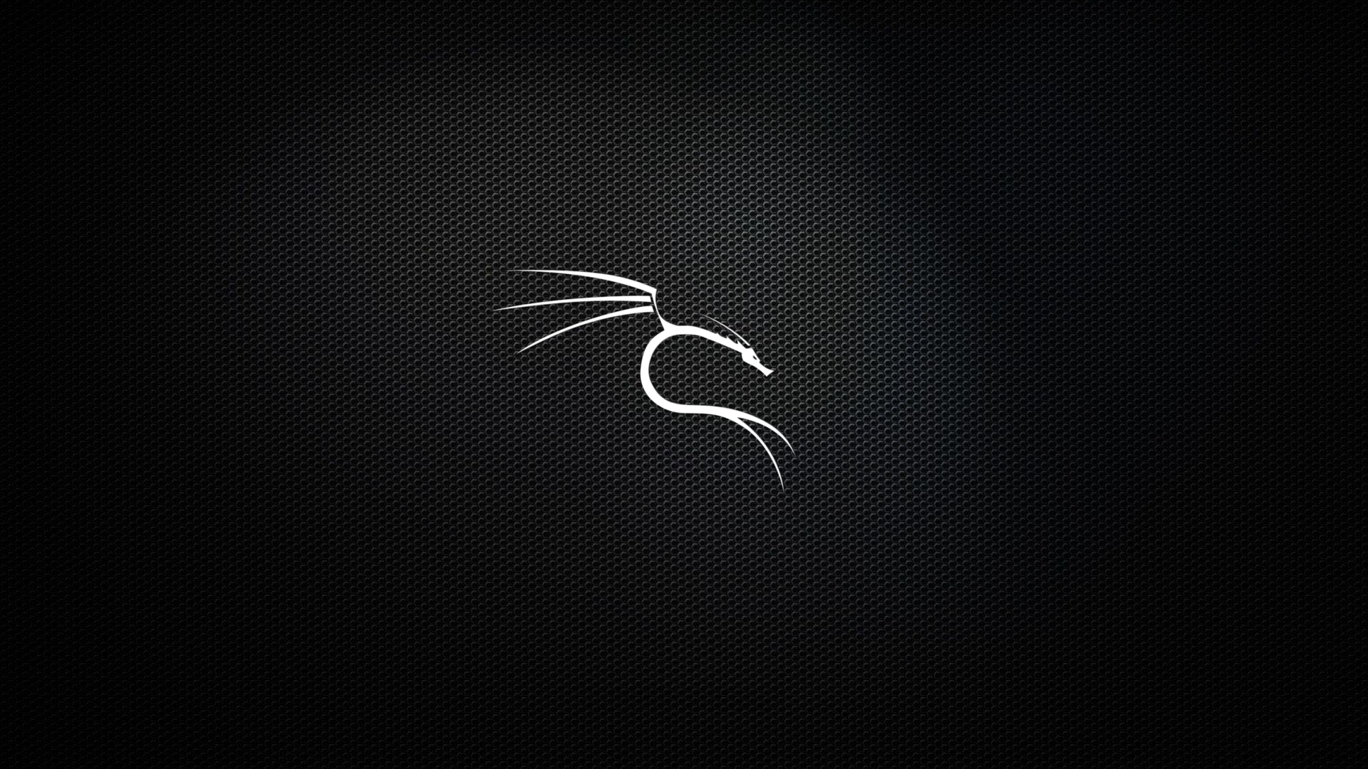 github - dorianpro/kali-linux-wallpapers: a set of dedicated kali