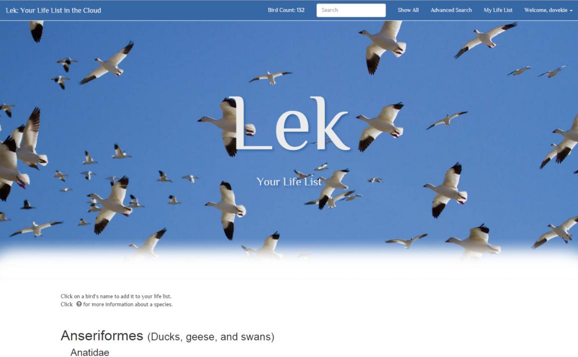 Lek homepage screengrab