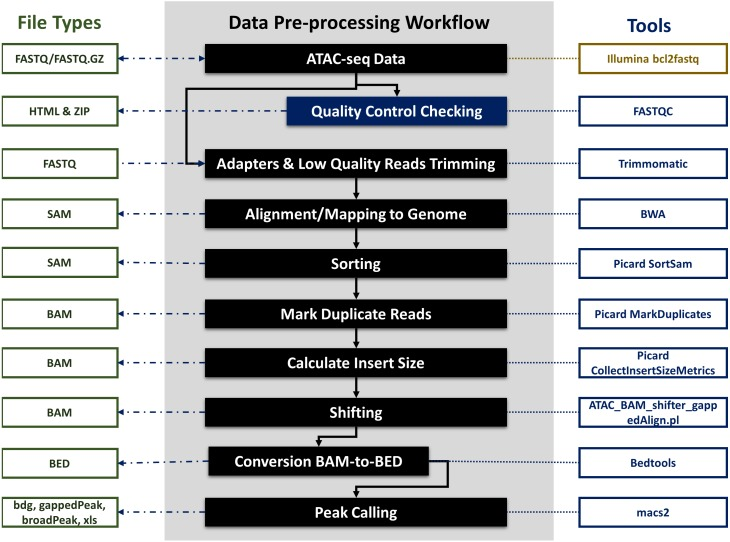 ATAC-seq data pre-processing workflow, file types and integrated tools.
