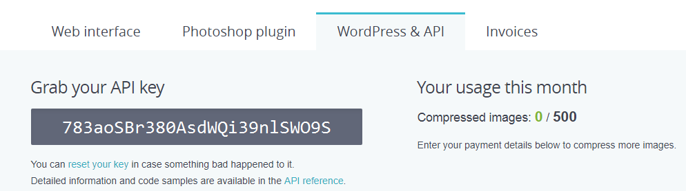 Developers API key page