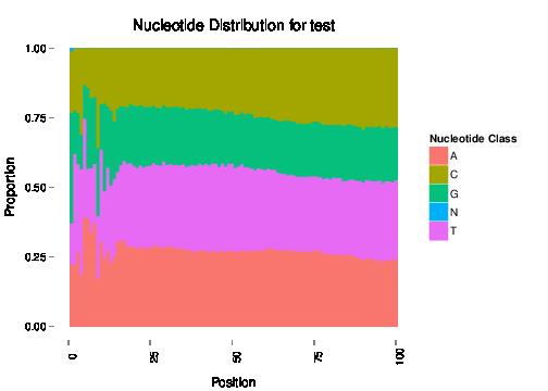 Nucleotide Proportions
