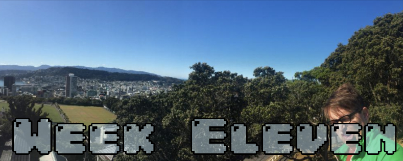 Week Eleven - Dylan looking insane at the end of a panoramic of Wellington NZ