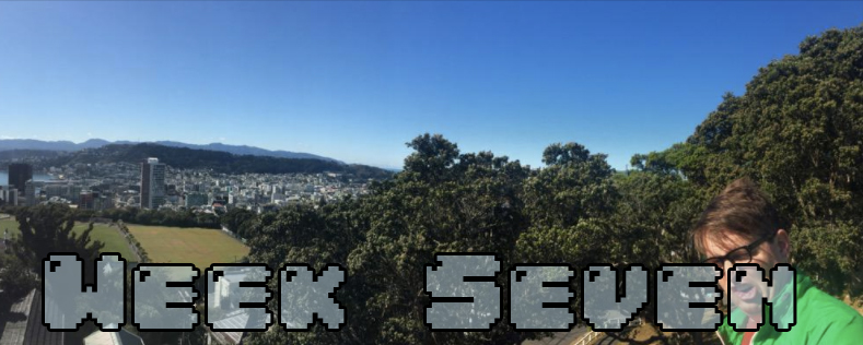 Week Six - Dylan looking insane at the end of a panoramic of Wellington NZ