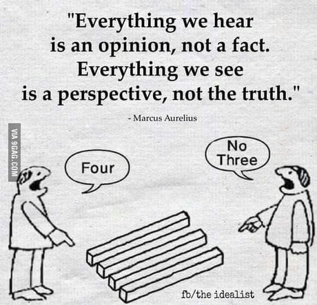 everything is an opinion