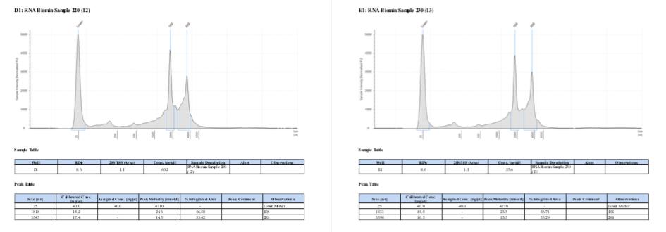 TS-Batch-1-sample-220-230.png