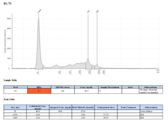 TS-biomin-Ext-Batch-12-73.png