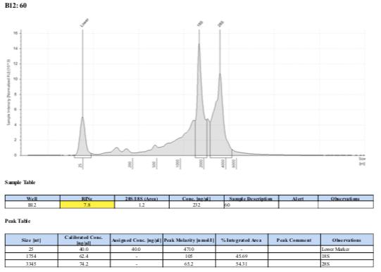 TS-biomin-Ext-Batch-11-60.png