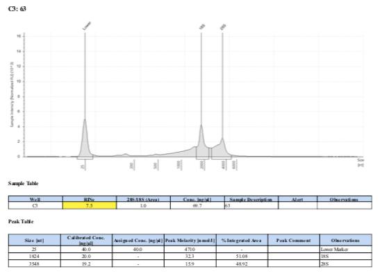 TS-biomin-Ext-Batch-11-63.png
