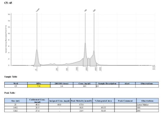 TS-biomin-Ext-Batch-11-65.png