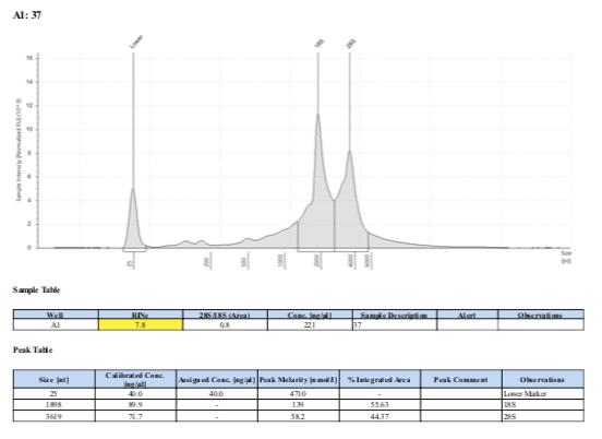 TS-biomin-Ext-Batch-8-37.png