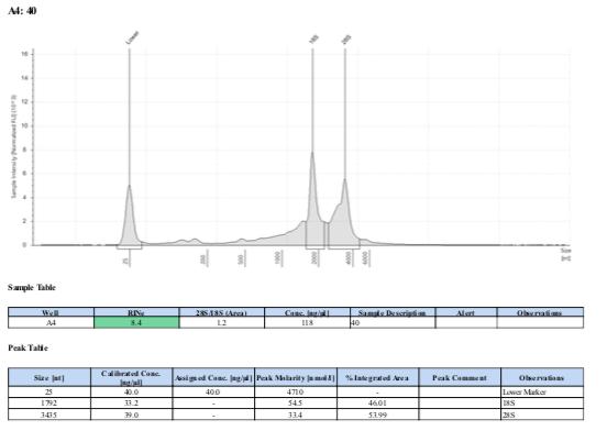 TS-biomin-Ext-Batch-8-40.png