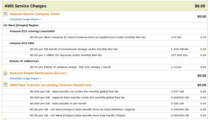 AWS Service charges Deploy an Amazon EC2 instance in the Free Usage Tier
