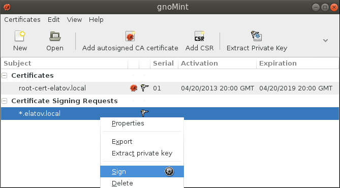 gnomint sign csr Setup Your Own Certificate Authority (CA) on Linux and Use it in a Windows Environment