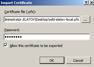 import pfx iis Setup Your Own Certificate Authority (CA) on Linux and Use it in a Windows Environment