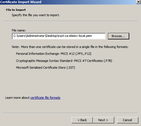 import root ca Setup Your Own Certificate Authority (CA) on Linux and Use it in a Windows Environment