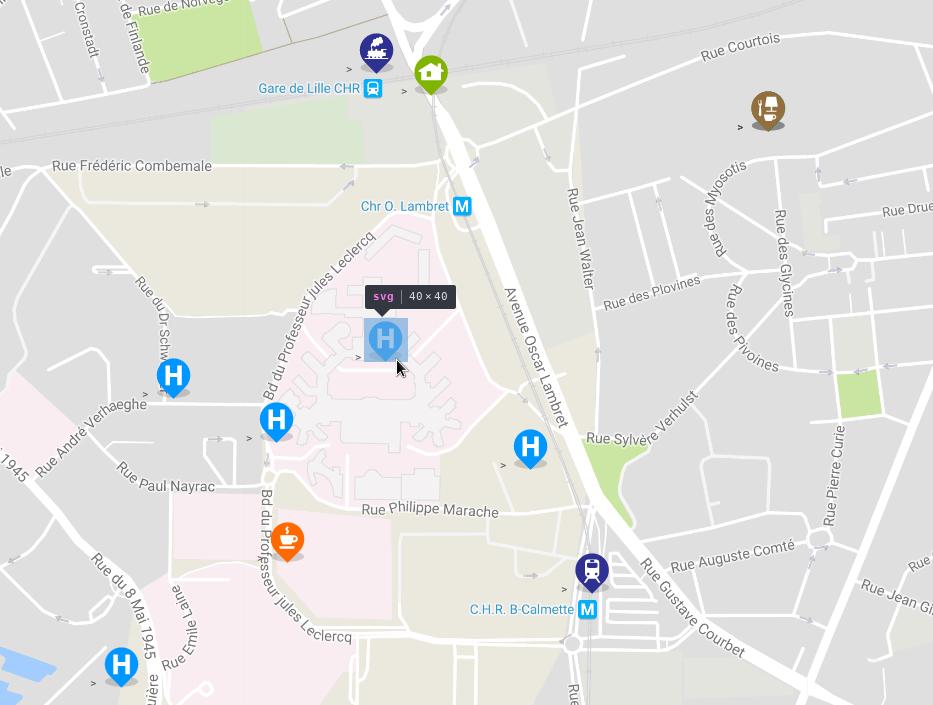 Vue2 Gmap Custom Marker Npm