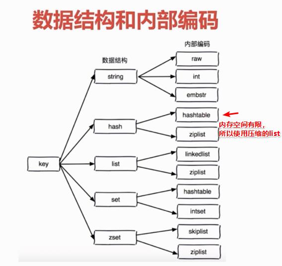 数据结构和内部编码