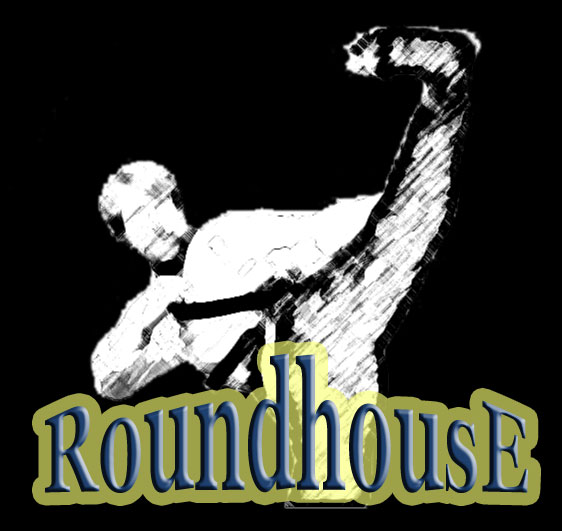 RoundhousE - Professional Database Management