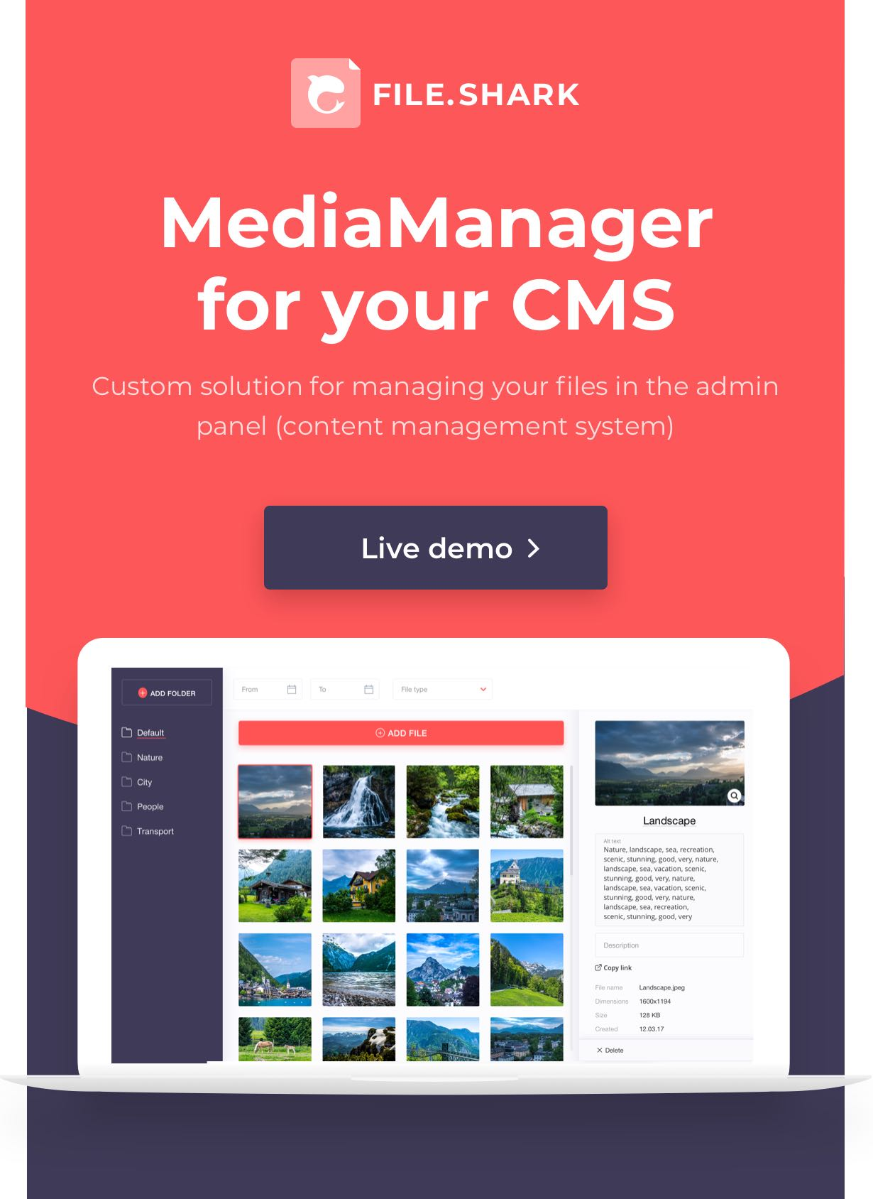 Media manager for your CMS - Custom interface solution for file management in your content management system.