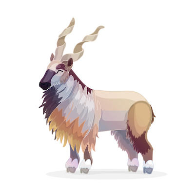 An illustration of a markhor, a mountain goat