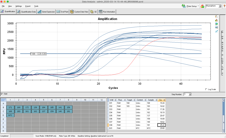2020-03-14_quantseq-juvenile_qPCR-amplification.png