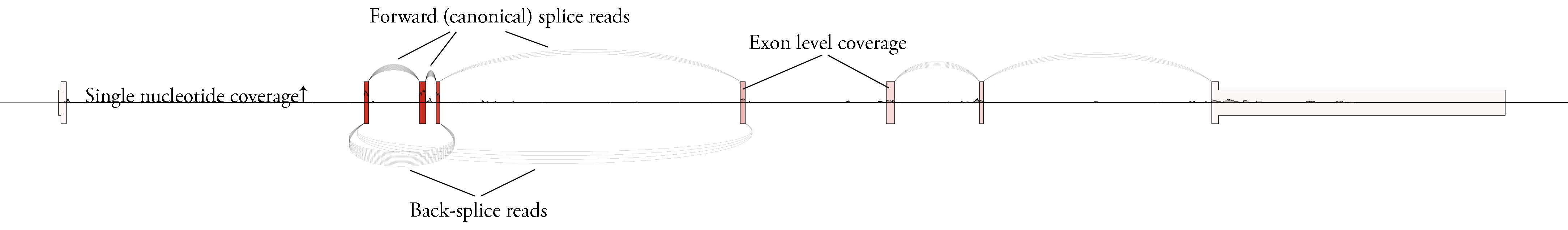 User example plot explained