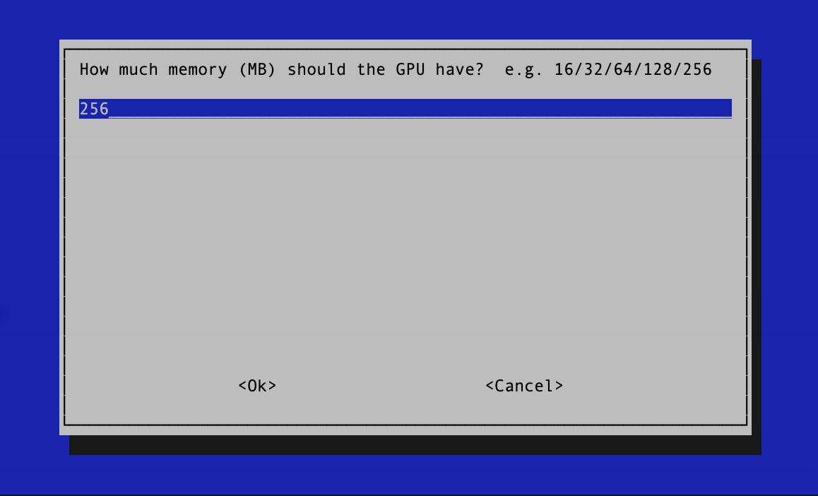 [Adjust GPU Memory in raspi-config]