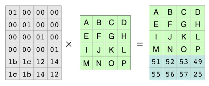 coding 4=>4+2