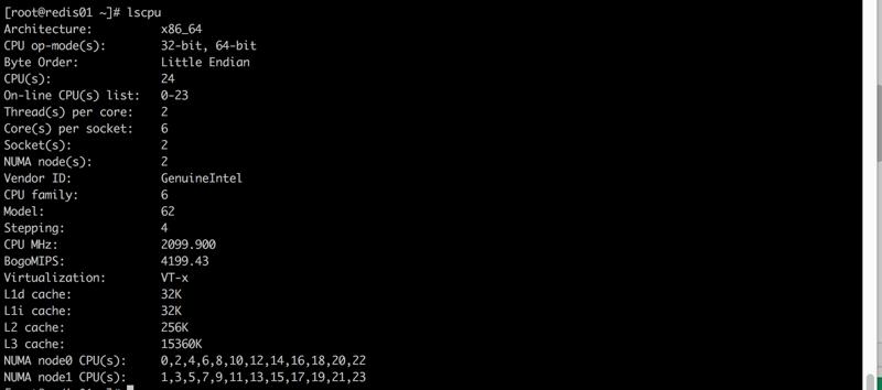 Linux_cmd_lscpu_1