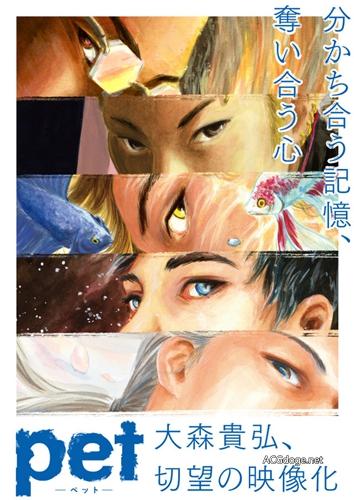 关于人的记忆,三宅乱丈漫画《PET》TV 动画化决定(动画视觉图公开)