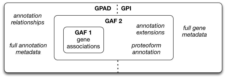 GAF-GPAD-figure