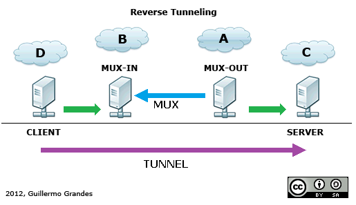 Reverse Tunneling