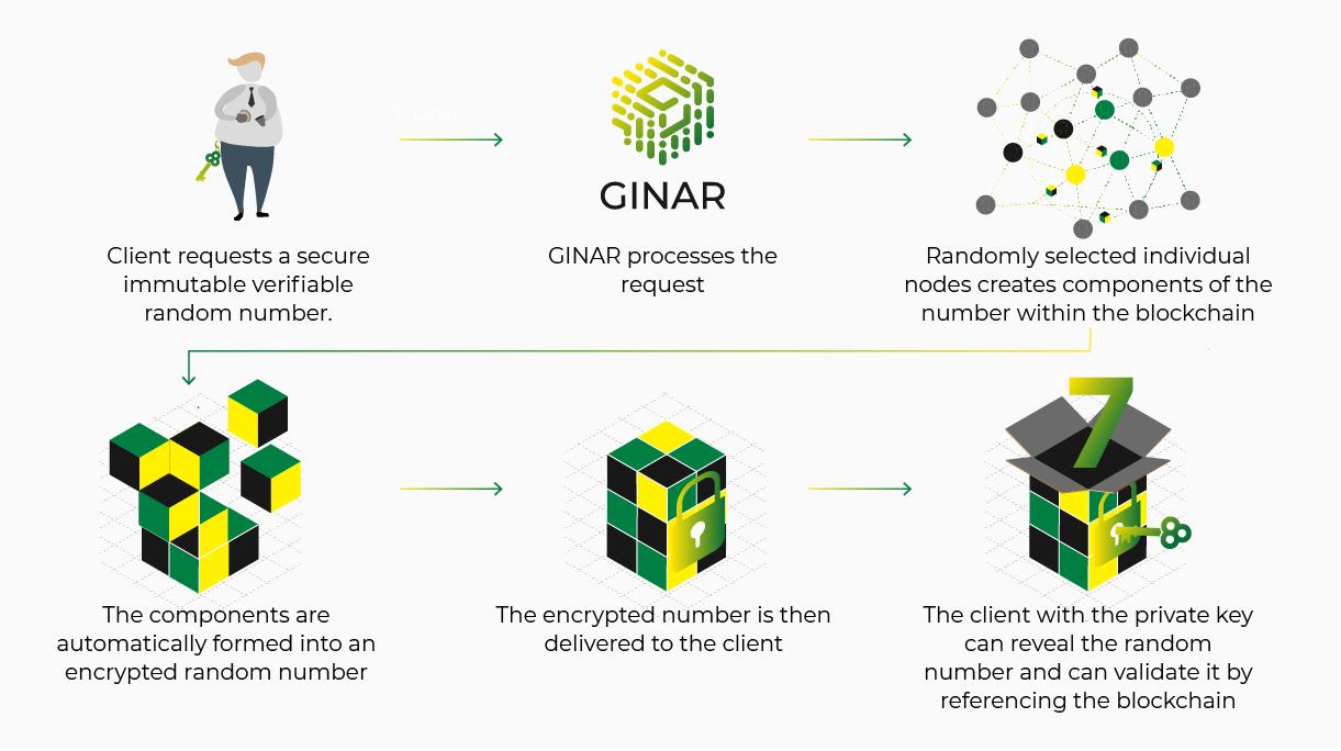 GINAR System