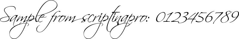 scriptinapro
