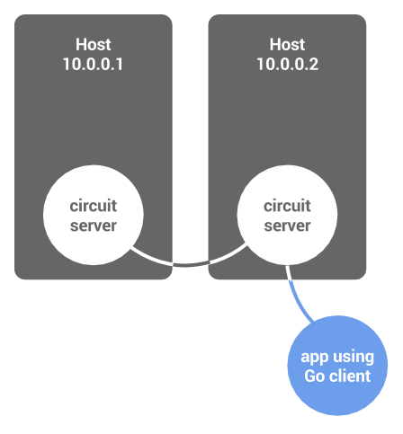 Circuit client connected to a server