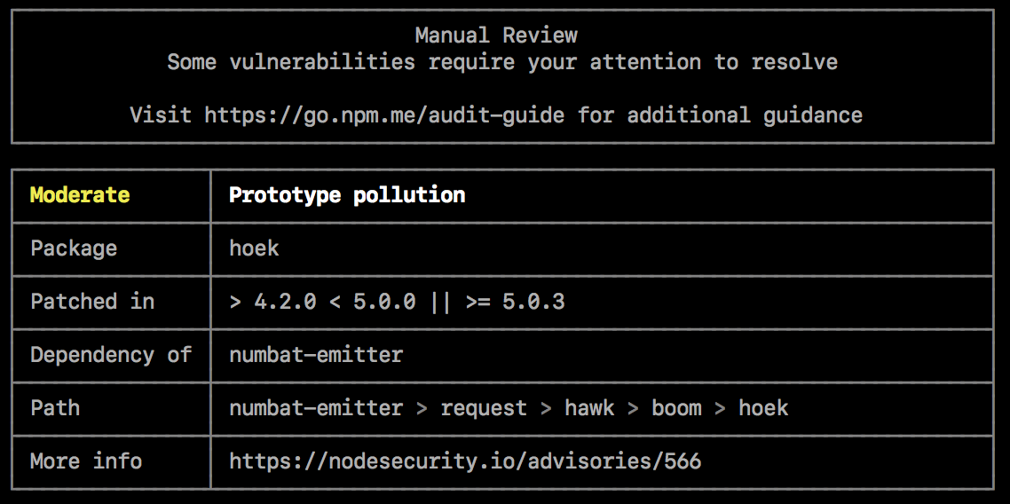 npm audit example