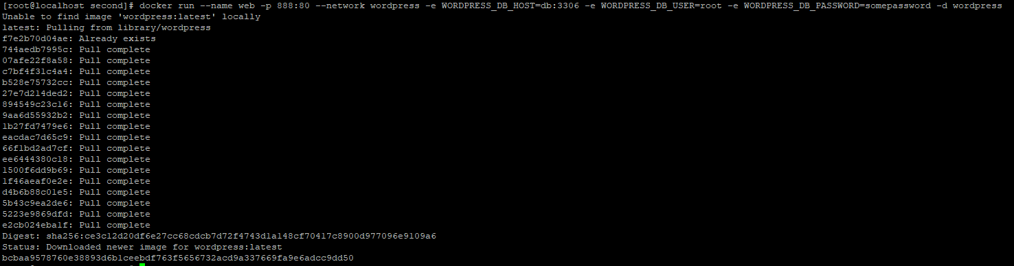 DockerOutput