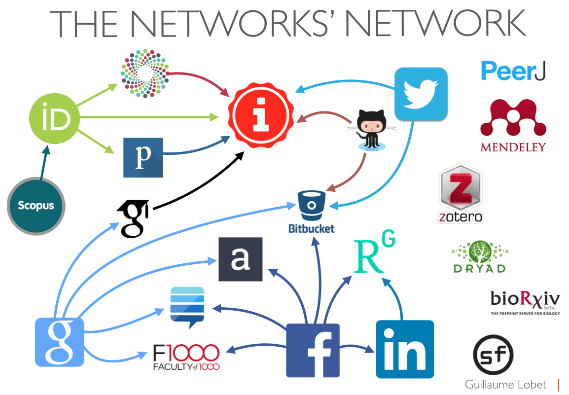 The networks' network
