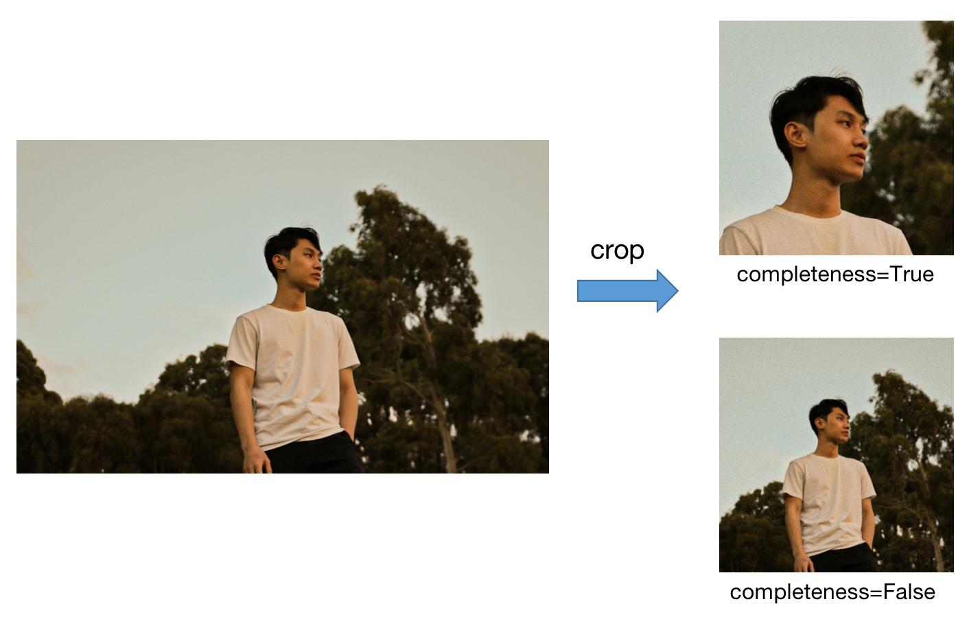 [crop]