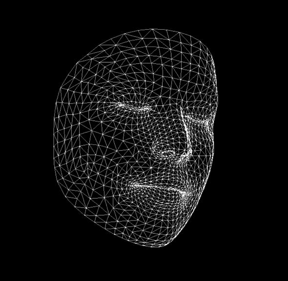 luma-face