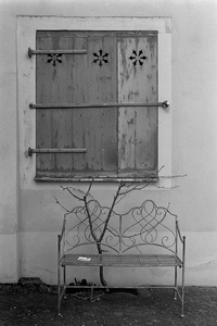 Bench, branch, window, leaflet and chain