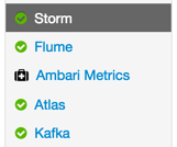 storm_service_started_iot
